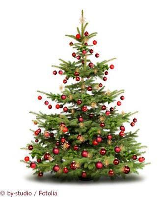 Weihnachtsbaum_c_by-studio_Fotolia