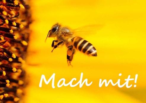 MachMit2.jpg