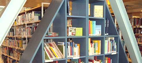 Die Erwachsenenbibliothek
