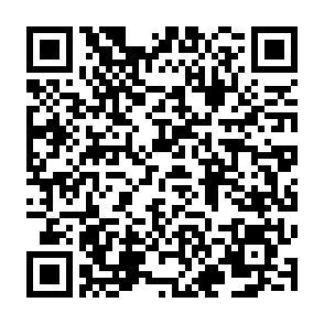 QR-Code Referate Anmeldeformular