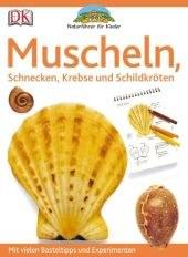 Muscheln.jpg