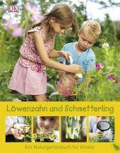 2013_ März_Löwenzahn und Schmetterling
